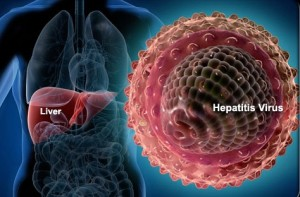 hepatitis B STD Test